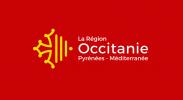 in-page-image_client-utilisateur-gofast_region-occitanie